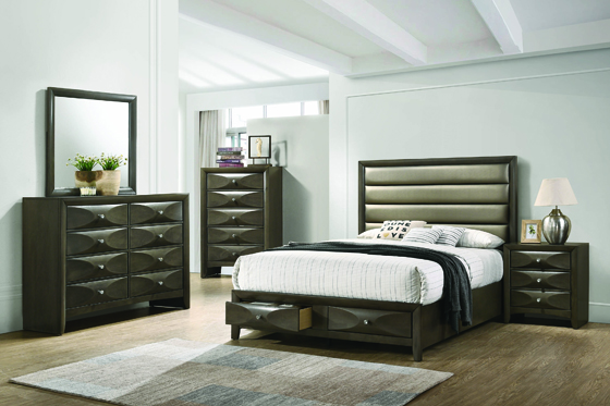 Salano Queen 2-drawer Storage Bed Mod Grey and Bronze - Hover